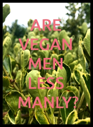 Are Vegan Men Less Manly 2
