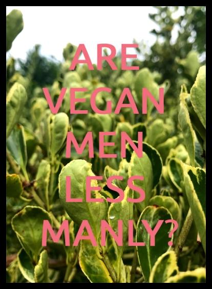 Are Vegan Men Less Manly 2